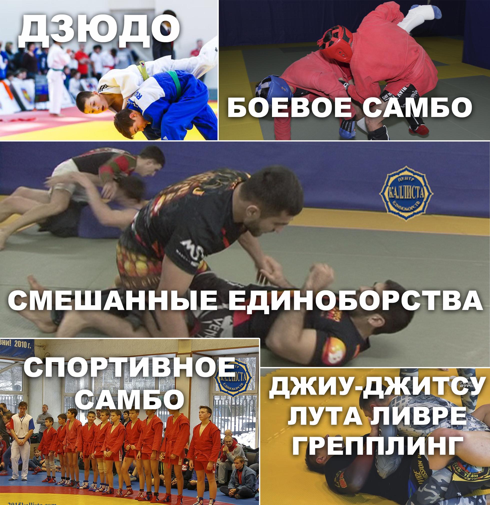 Зеленоград школа единоборств Каллиста